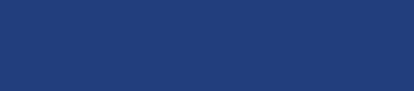 Saber King Logo
